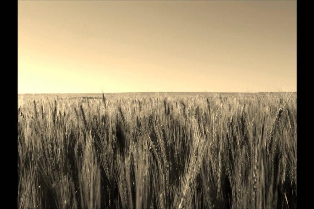 jean-yves_thibaudet_-_solitude